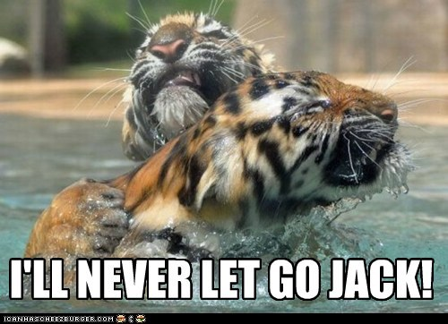 hugging never let go Sad swimming tigers titanic water - 6100353024