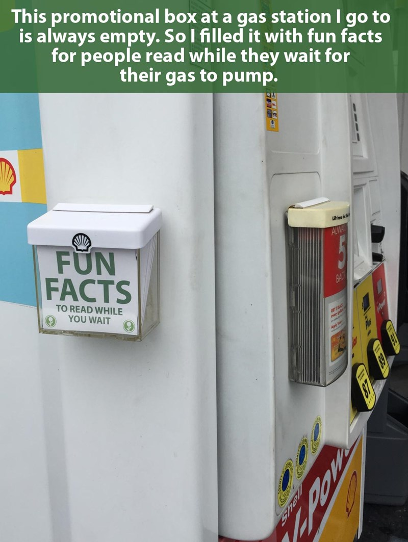 school facts list gas station - 610053