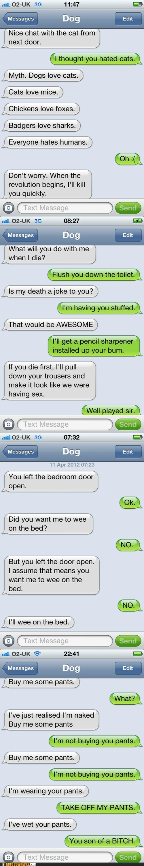 AutocoWrecks iphone part 2 texts from dog tumblr - 6100552192