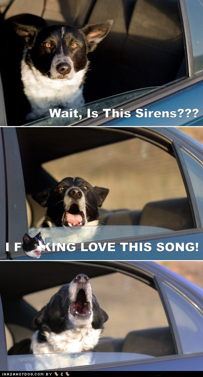 cars dogs howling multipanel Music siren song Songs