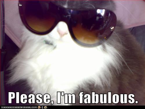 beautiful fabulous Hall of Fame hot sexy sunglasses - 6100792064