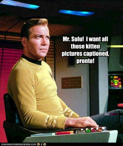 Captain Kirk,captions sulu,kitten,lols,pictures,Shatnerday,Star Trek,William Shatner