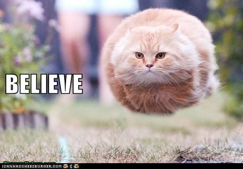 ball believe bizarre Cats float floating Hall of Fame HoverCat legs lolcat photoshopped weird wtf - 6101091584