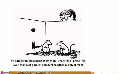 grad students,lab mice,theyre-learning