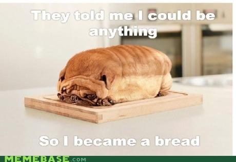 bread dogs food gross They Said - 6102706176