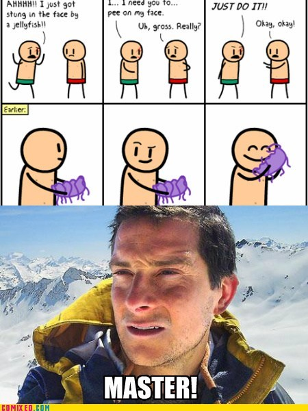 bear grylls,better drink my own piss,jellyfish,the internets