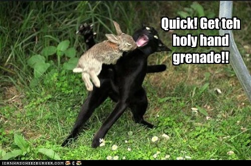 attack Cats Hall of Fame holy grail holy hand grenade lolcat monty python rabbit the holy hand grenade of antioch - 6103212544
