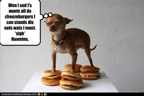 Cheezburger Image 6103564544