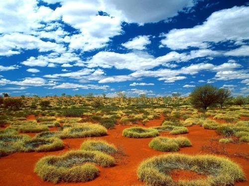 australia,desert
