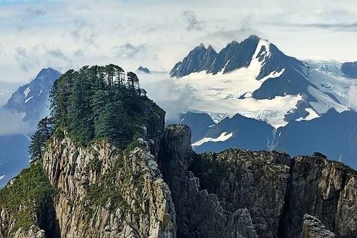 alaska,Forest,mountain,summit