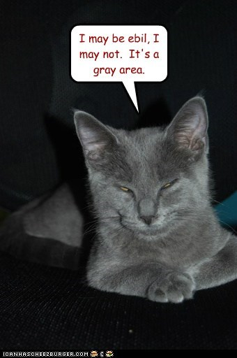 black and white evil good grey idk lolcat meh moral