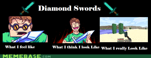 diamond swords meme minecraft what i look like what i think i do