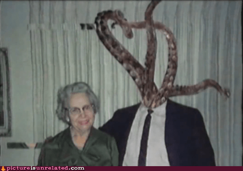 family photos,japanese entertainment,tentacles,wtf