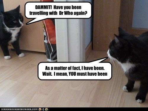 Awkward,cat,doctor who,lolcat,mirror,paradox,self,time travel