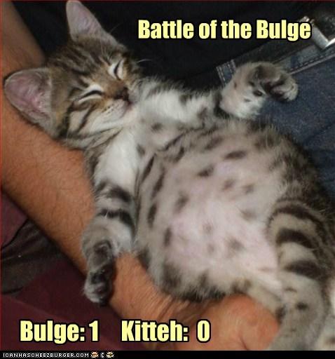Battle of the Bulge Bulge: 1 Kitteh: 0