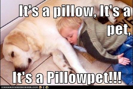 It's a pillow, It's a pet, It's a Pillowpet!!!