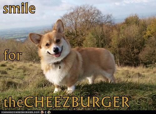 Cheezburger Image 6104562688