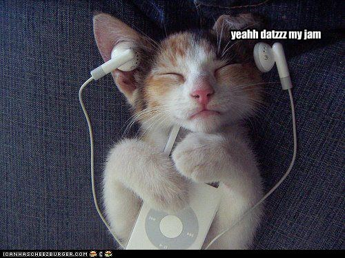 ear ipod jam listen lolcat Music rock out - 6104753920