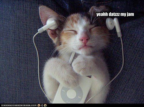 ear ipod jam listen lolcat Music rock out - 6104753920