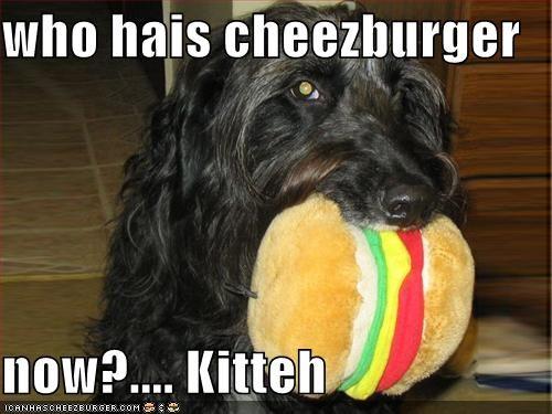 Cheezburger Image 610505472