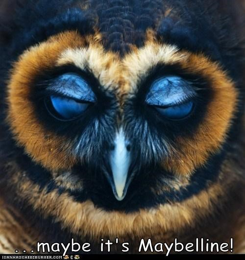 ...maybe it's Maybelline!
