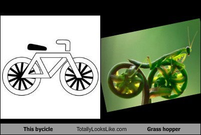 This bycicle Totally Looks Like Grass hopper