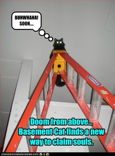 Doom from above... Basement Cat finds a new way to claim souls. BUHWHAHA! SOON....