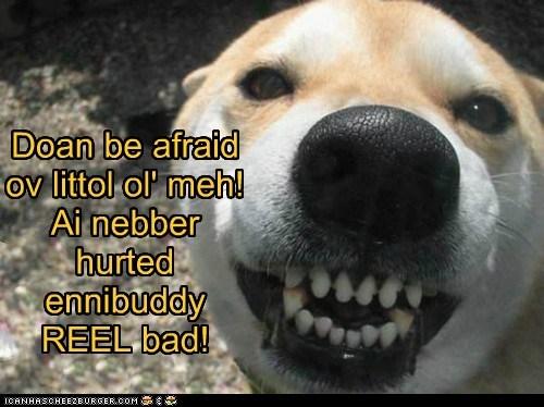 Doan be afraid ov littol ol' meh! Ai nebber hurted ennibuddy REEL bad!