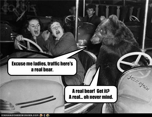 Excuse me ladies, traffic here's a real bear. A real bear! Get it? A real... oh never mind.