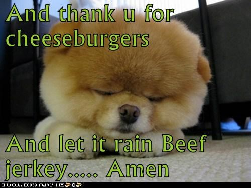 And thank u for cheeseburgers And let it rain Beef jerkey..... Amen