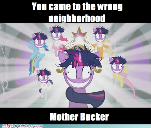 crazy twilight,elements of harmony,meme,mother bucker,wrong neighborhood