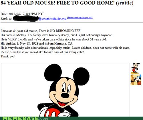 craigslist mouse shoppers beware - 6106737664
