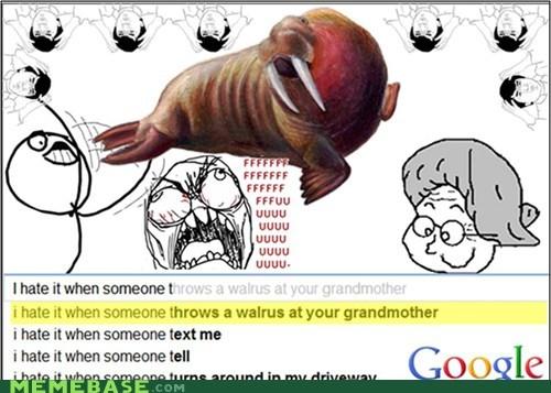 google grandmother seems legit surprise walrus - 6106824192