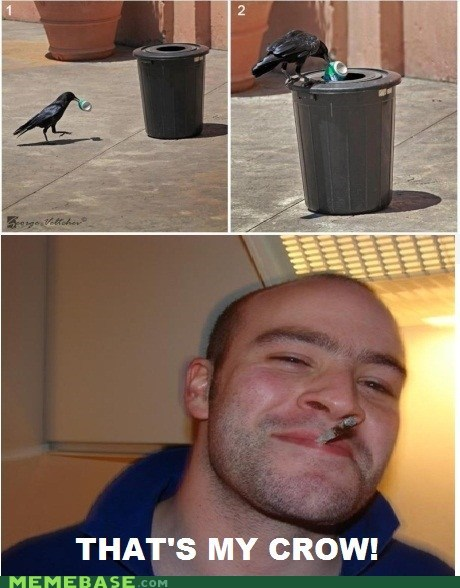 animals,crow,Good Guy Greg,pets,trash