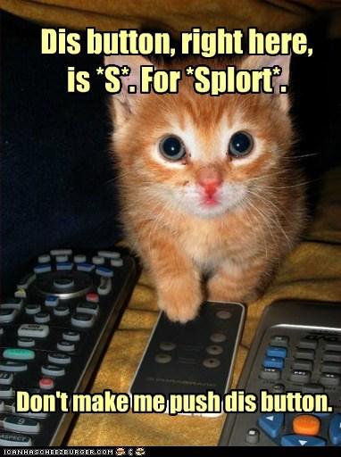button cute lolcat remote squee threat - 6107984384