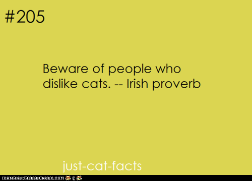 best of the week,beware,Cats,dislike,Hall of Fame,haters,Ireland,irish,proverbs
