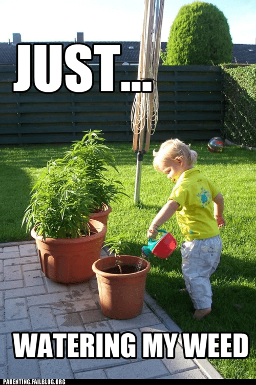 420 marijuana watering can - 6108643328