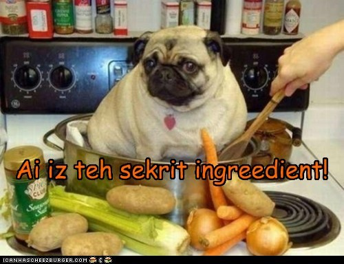 Cheezburger Image 6109126144