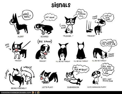 dogs drawings illustrations language signals - 6109174784