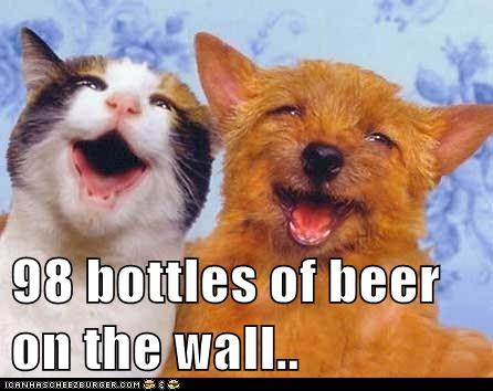 beer cat dogs drunk happy - 6109541632
