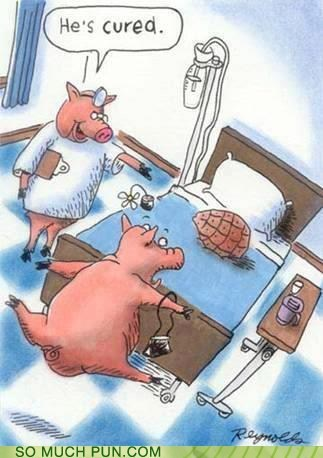 cooking cure cured disease double meaning Hall of Fame ham literalism pig process - 6109555712