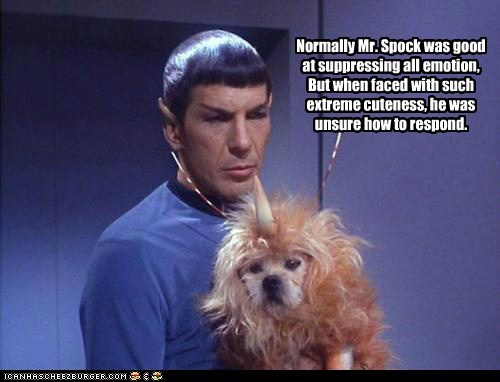 adorable cute dogs emotion Leonard Nimoy puppy Spock Star Trek unsure - 6110060544