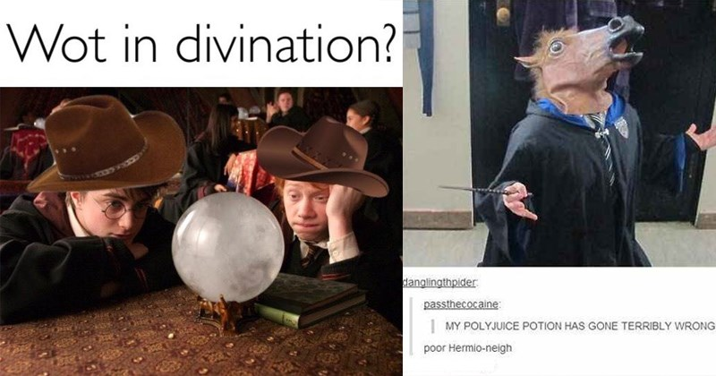 Harry Potter harry potter memes hermione granger dumbledore snape draco malfoy neville longbottom Ron Weasley Severus Snape harry potter tumblr voldemort jk rowling - 6110469