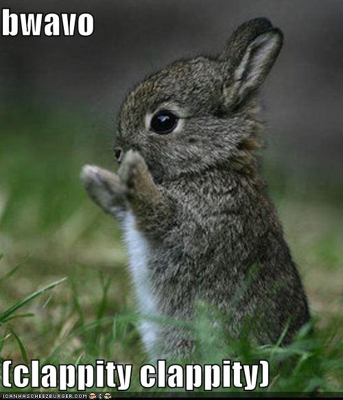 bravo bunnies clapping rabbits