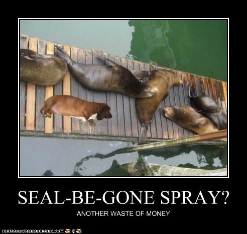 SEAL-BE-GONE SPRAY? ANOTHER WASTE OF MONEY