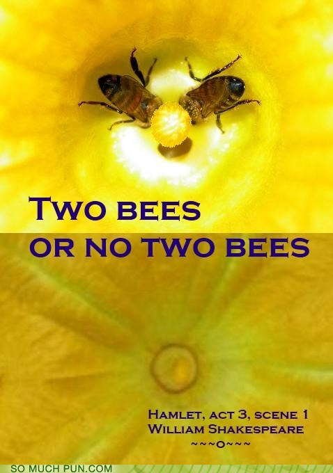 be bees double meaning hamlet homophones literalism soliloquy TO two
