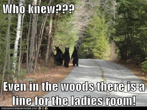bathroom,bears,best of the week,Hall of Fame,in the woods,jokes,ladies room,line,lines