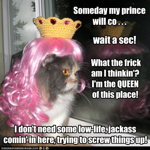 What the frick am I thinkin'? I'm the QUEEN of this place! wait a sec! I don't need some low-life, jackass comin' in here, trying to screw things up! Someday my prince will co . . .