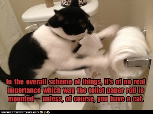 In the overall scheme of things, it's of no real importance which way the toilet paper roll is mounted--- unless, of course, you have a cat.