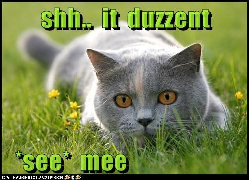 Cheezburger Image 6113732096